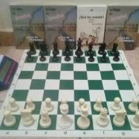 Mazatlán promueve en serio el ajedrez